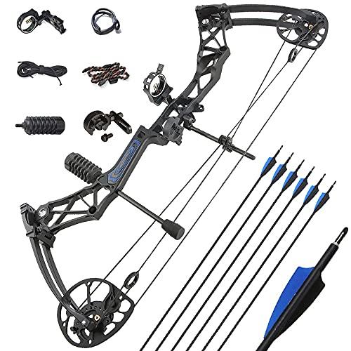 ZSHJGJR Archery Compound Bow Kit Complete Compound Bow Arrow Package Set...