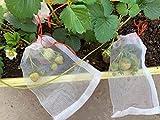 R.N.L - 50 bolsas de protección para frutas, manzanas y peras, bolsa de malla transpirable con cordón de ajuste contra insectos parásitos