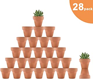 Riseuvo 28pcs Small Mini Clay Pots, 2'' Terracotta Pot Clay Ceramic Pottery Planter, Cactus Flower Terra Cotta Pots, Succulent Nursery Pots, with Drainage Hole, for Indoor/Outdoor Plants, Crafts