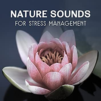 Nature Sounds for Stress Management – Calming Sounds, Inner Harmony, Self Hypnosis Therapy, Healing Natural Meditation, Music for Deep Sleep