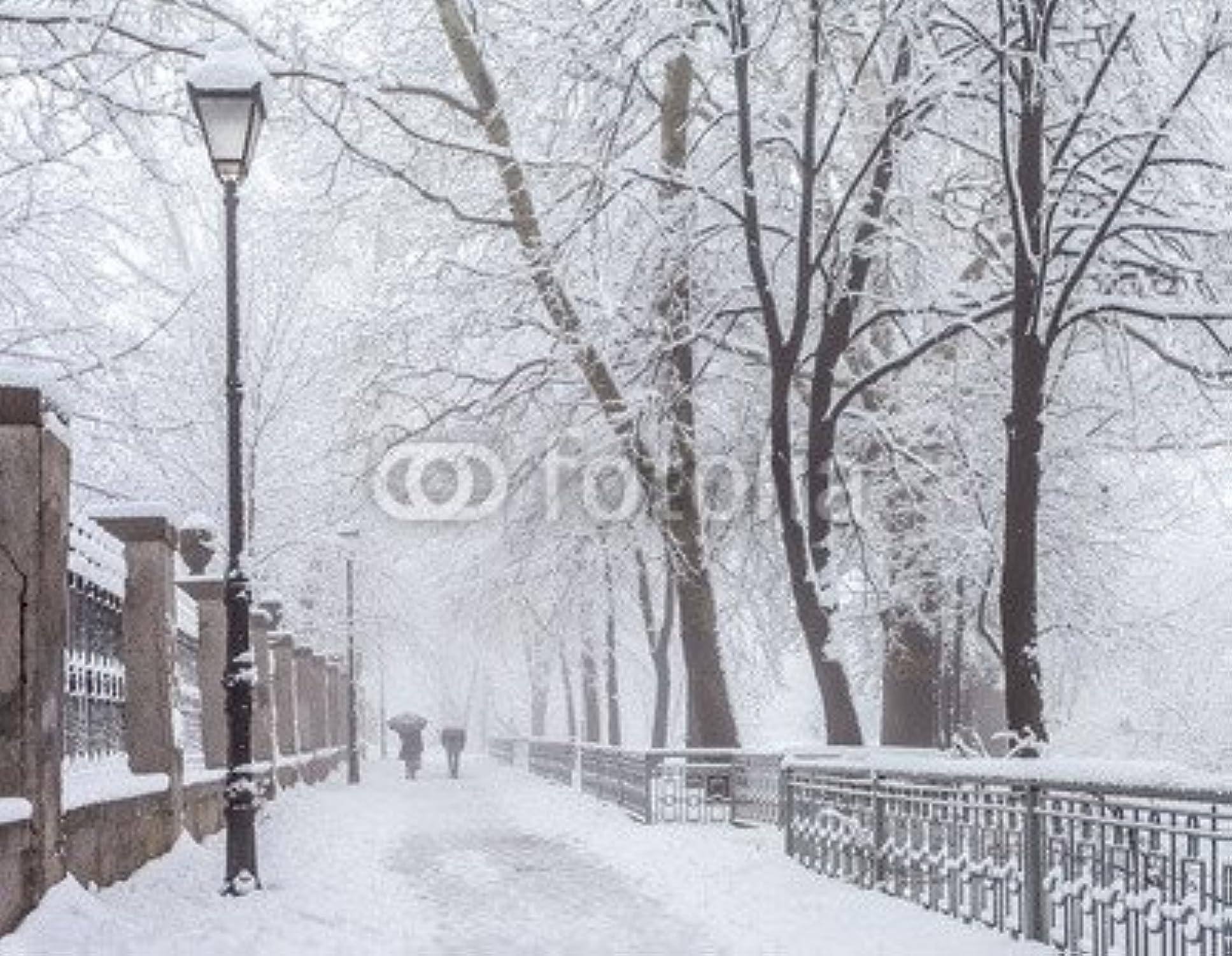 Diseo de invierno City Park en de la maana (70170449), lona, 50 x 40 cm