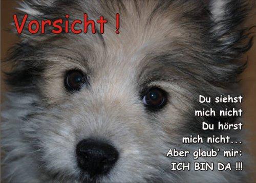 INDIGOS UG - Türschild FunSchild - SE474 - ACHTUNG Hund Elo - für Käfig, Zwinger, Haustier, Tür, Tier, Aquarium - DIN A4 PVC 3mm stabil