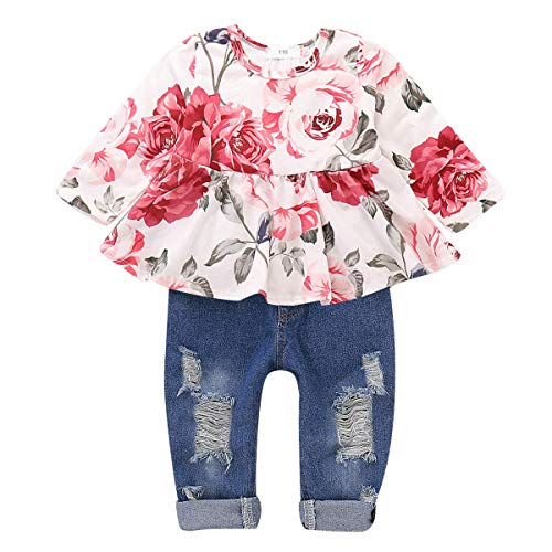 CARETOO Girls Clothes Outfits, Cute Baby Girl Floral Long Sleeve Pant Set Flower Ruffle Top (Pink, 6-12 Months)