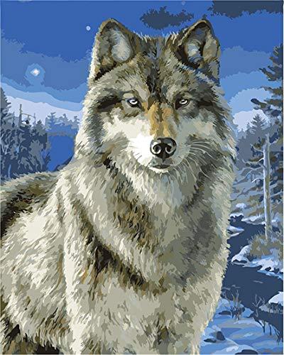 CaptainCrafts Nouvelle Peinture par numéros 16x20 pour Les Adultes, Enfants Toile - Loup de Neige, Animaux de Loup (avec Cadre)