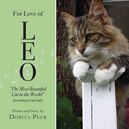 For Love of Leo: The Most Beautiful Cat in the World, According to His Lady