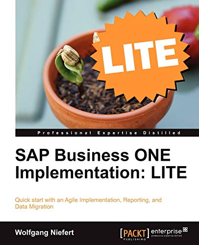 SAP Business ONE Implementation: LITE (English Edition)