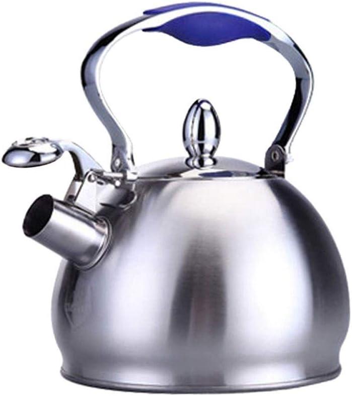 LIU Whistling Kettles Nashville-Davidson Award-winning store Mall Tea Ergo Kettle-Stainless Steel