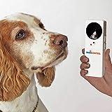 easylife lifestyle solutions Ultrasonic Bark Control | L12xW4.2xD2.4cm