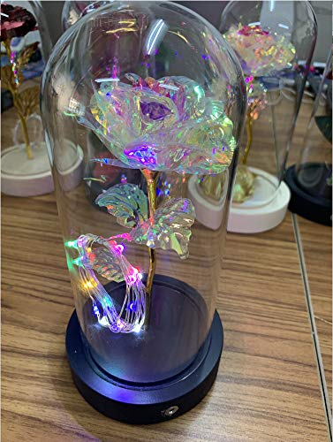 Euch Juego de regalo de rosa de La Bella y la Bestia, cúpula de cristal, lámpara de rosas artificiales, base de madera, decoración para el hogar, regalo de San Valentín (color rojo con corazón floral)