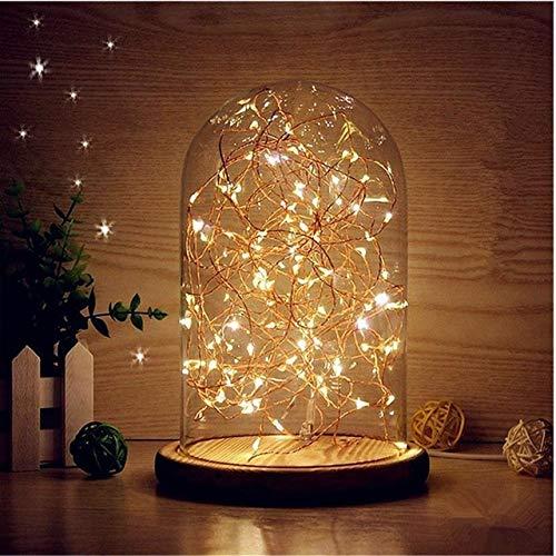 Cloche en verre avec guirlande de 20 micro LED blanc chaud, décoration lumineuse, Noël