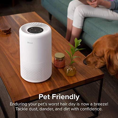 Levoit Air Purifier for Home with True HEPA Filter, Air Cleaner Filtration System for Allergies, Pets Odor, Smokers, Mold, Dust, 3 Fan Speeds, Timer Settings, Night Light and Sleep Mode, Quiet in Bedroom, Office, Vista 200