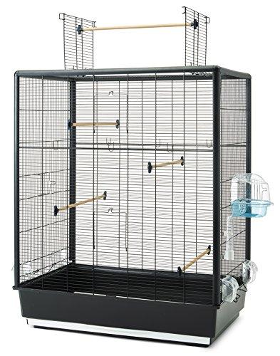 Savic 562304 Cage à Oiseaux Primo Open Empire Noir 80 x 50 x 115 cm