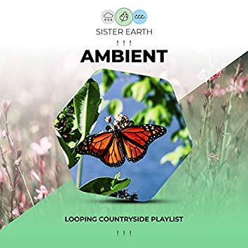 ! ! !  Looping Ambient Countryside Playlist ! ! !