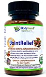 Natural Joint Supplement | Safe Rheumatoid Arthritis Joint Relief | Safe Anti Inflammatory Joint Health Joint Support by Bodymune | Best Joint Nutrition Vegan Gluten Free Non GMO | 60 Day Supply