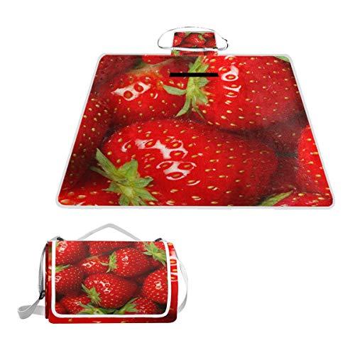 LZXO Jumbo-Picknickdecke, faltbar, Erdbeermuster, groß, 145 x 150 cm, wasserdicht, handliche Matte, für Outdoor-Reisen, Camping, Wandern.