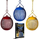 Backyard Expressions - Set of 3 Squirrel Proof Bird Feeders for Outside - Bonus Ebook and Bird Attraction Audio Included - Squirrel Resistant Bird Feeders