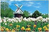 ACCYT Único Rompecabezas de 1000 Piezas para Adultos: cabaña Holandesa y Tulipanes Imposibles Rompecabezas difíciles y Juego Educativo Divertido y Divertido para niños y Adultos