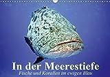 In der Meerestiefe. Fische und Korallen im ewigen Blau (Wandkalender 2021 DIN A3 quer)