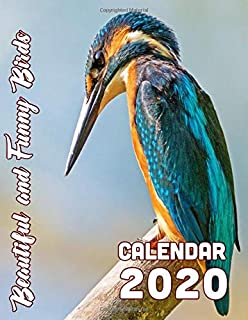Beautiful and Funny Birds Calendar 2020: 14-Month Desk Calendar Showing Some Strange and Beautiful Animals on Wing