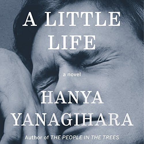 Page de couverture de A Little Life