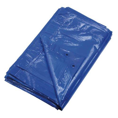 Ribiland 6401 - Bâche indéchirable - 3 x 5 m - 90 g/m2 - Bleu
