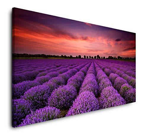 Paul Sinus Art Lavendel 120x 60cm Panorama Leinwand Bild XXL Format Wandbilder Wohnzimmer Wohnung Deko Kunstdrucke