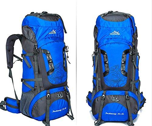 Nouveau sac d'alpinisme extérieur professionnel voyage cadre extérieur imperméable de sac à dos du sac à dos grande capacité , blue
