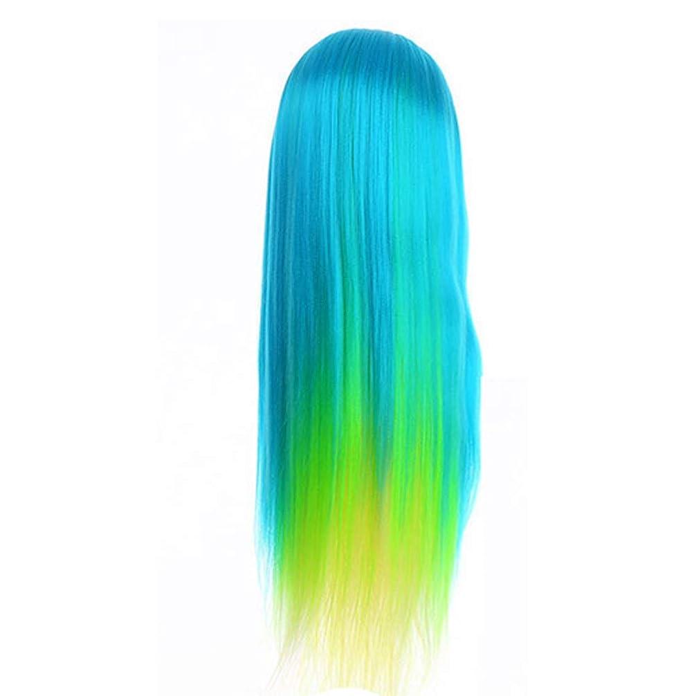 かすかな湿度識別するサロン散髪練習ヘッドモデルメイク学校編組髪開発学習モデルヘッドヘアストレートロングかつら
