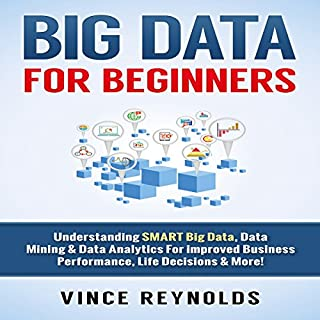 Big Data for Beginners audiobook cover art