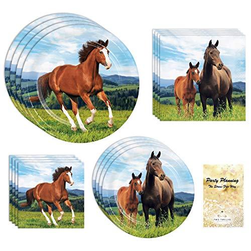 Pony Horse Party Supplies (Pony & Horse Dinnerware)
