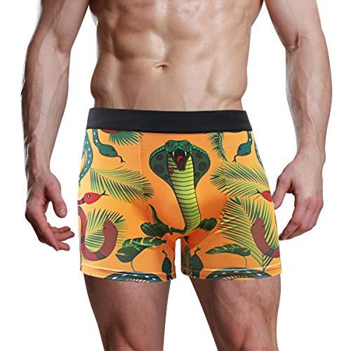 Best Mens Novelty Underwear