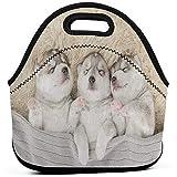 Bolsa de almuerzo portátil Tote Siberian Puppy Dog Neoprene Lunch Handbag Food Zipper Storage Lunch Box para hombres mujeres niños