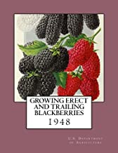 Growing Erect and Trailing Blackberries