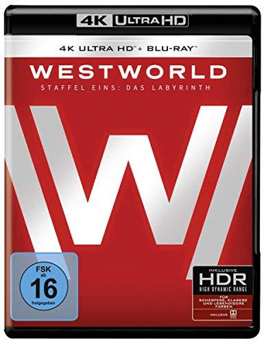 Westworld - Die komplette 1. Staffel (3 Blu-rays 4K Ultra HD) (+ 3 Blu-rays 2D)