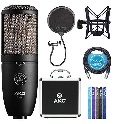 AKG P420 Large-Diaphragm Condenser Microphone for Recording Guitars, Pianos, Woodwinds, Percussion, and String Instruments Bundle with Blucoil Pop Filter, 10-FT Balanced XLR Cable, 5X Cable Ties