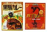 沖縄のカレー2箱セット(黒豚カレー 180g・ハブカレー(中辛・200g))