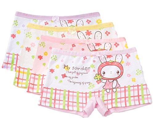 FAIRYRAIN FAIRYRAIN 4 Packung Baby Kleinkind Mädchen Kaninchen Blume Pantys Hipster Shorts Spitze Baumwollunterhosen Unterwäsche 2-3 Jahre