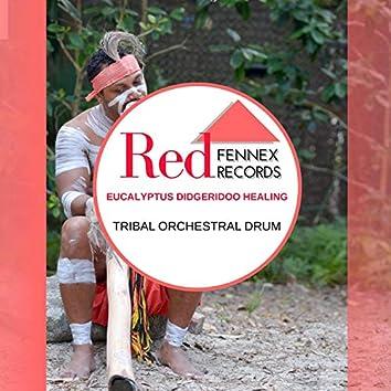Eucalyptus Didgeridoo Healing - Tribal Orchestral Drum