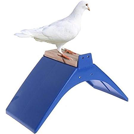 M Misciu Pigeon Perch Plastic Heat Resistance Dove Rest Roost Bird Stand Holder Supplies