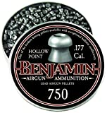 Benjamin 14020 .177-Caliber Hollow Point Small Game Hunting Pellets (750-Count)
