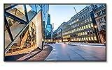 NEC Deutschland 60004516 248 cm (98 Zoll) Großformat-Monitor Display LED