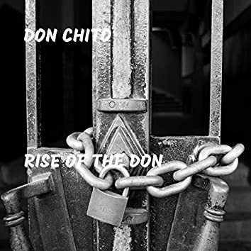 Rise of the Don
