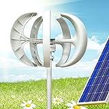 WUPYI2018 - Generador eólico, turbina eólica, 600 W, 24 V, eléctrico, generador eólico, farol blanco, kit eólico vertical con 5 aspas para eólica con controlador sin poste (24 V, blanco)
