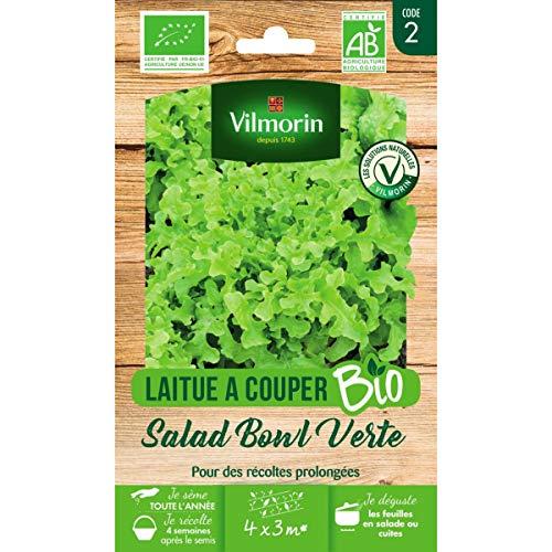 Vilmorin Sachet graines Laitue à Couper Salad Bowl Verte Bio