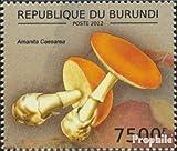 Prophila Collection Burundi 2742 (Completa.edición.) 2012 Hongos comestibles (Sellos para los coleccionistas) Plantas / Hongos