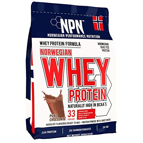NPN Whey Protein Powder | Proteina di siero di latte di alta qualità norvegese | Proteine in polvere per la costruzione muscolare con aminoacidi essenziali | 33 porzioni | 908 g Di puro cioccolato