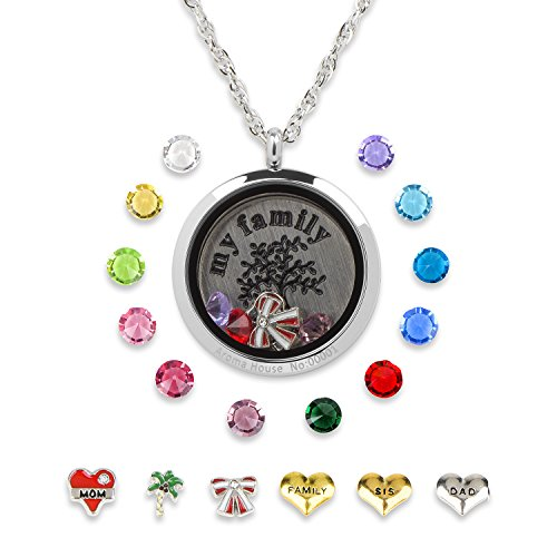 Floating Living Memory Lockets-Stainless Steel Charms Locket Necklace,12 Birthstones+6 Charms (Silver)