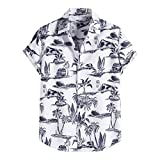 Xmiral Camicia Hawaiana Uomo Camicette estive Camicia Magliette t Shirt Uomo Camicie Maglietta Camicia Camicetta Uomo Colorato Estate Manica Corta Bottoni Allentati Casual Hawaiano (5XL,9bianca)