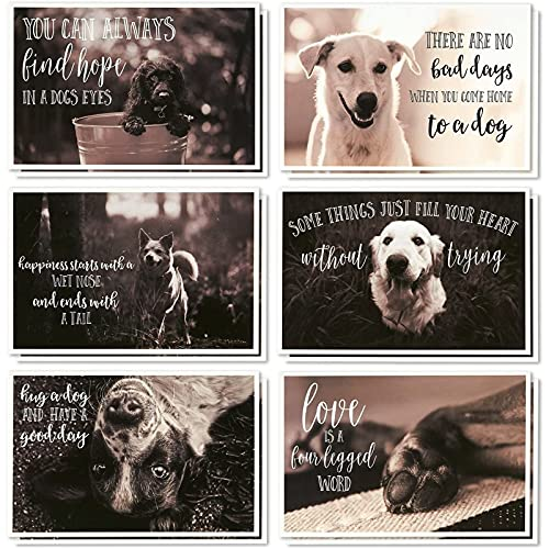 Motivational Quotes Greeting Cards with Envelopes, Dog Designs (4x6 In, 36 Pack)