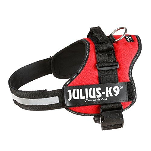 Julius-K9, Talla 1, 66-85 cm, Rojo: Amazon.es: Productos para mascotas